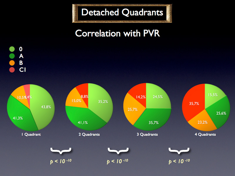 The difference between the number of detached quadrants is even more obvious when correlating it with the PVR stage distribution. When more quadrants are detached the easy stages 0 and A become less frequent and the more severe cases B and C1 are found more frequently.
