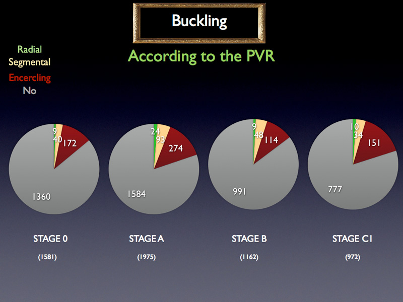 It seems that in proportion more buckles are performed at advanced PVR stages, however the trend is not really obvious.