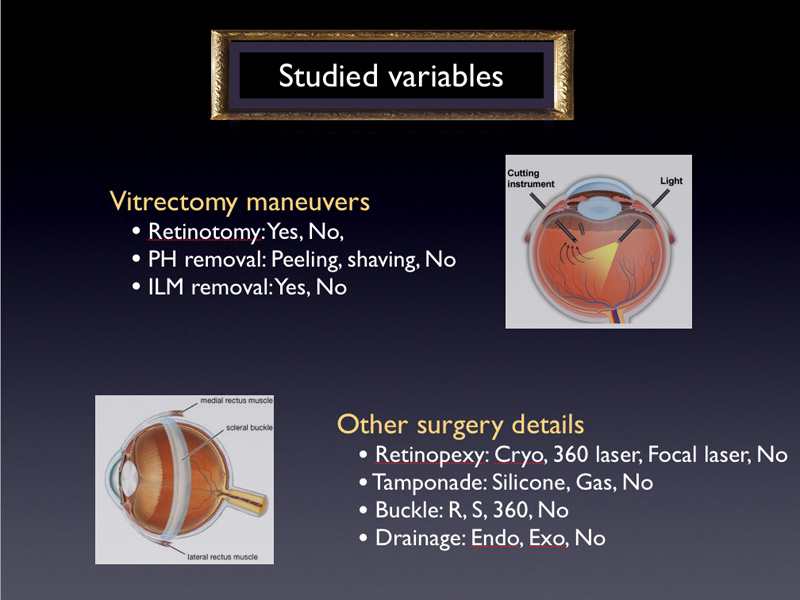 3 variables about maneuvers during vitrectomy and 4 other surgery details The surgeon and country variables were not studied for the following reason :